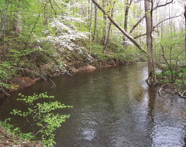 Fawn River Nature Preserve